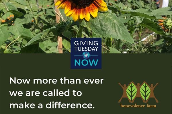 Benevolence Farm Residents