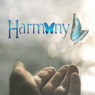 Harmony House Tucson
